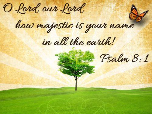 Psalm8-1